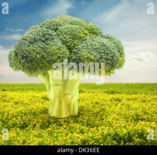 Composite of broccoli tree in flower field - Stock Photo