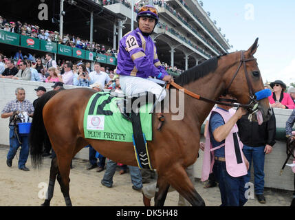 May 6, 2011 - Louisville, Kentucky, U.S. - Plum Pretty (no. 12), ridden by MARTIN GARCIA and trained by Bob Baffert, - Stock Photo