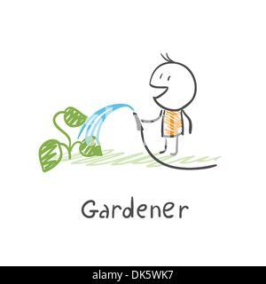 Gardener watering plants - Stock Photo