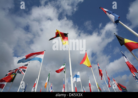 Many european flags in the wind and sun - Stock Photo