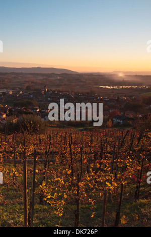 Sunset over Italian vineyard on autumn - Stock Photo