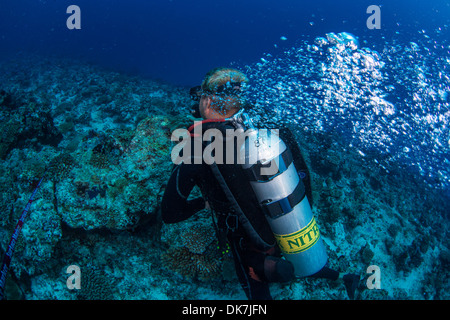 Diver holding reef in current - Stock Photo