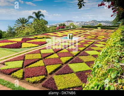 Botanical Gardens Funchal Madeira - Stock Photo