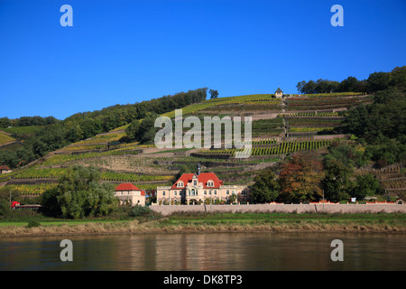 View across river  Elbe on to vineyards near Meissen, Saxony, Germany - Stock Photo