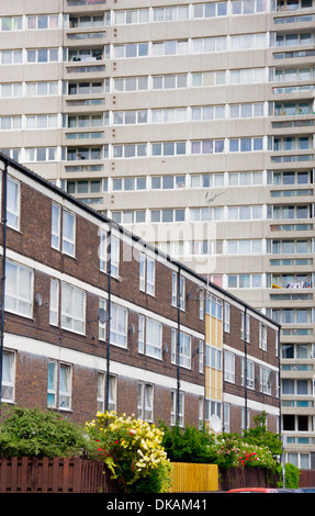 Council housing tower and flats in east London - Stock Photo