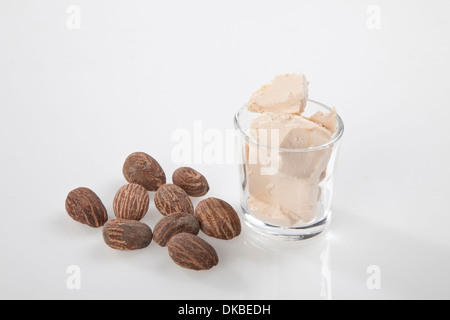 Shea Nuts with shea nut butter cream. - Stock Photo