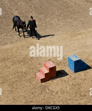 Oct. 21, 2011 - Poway, California, USA -  A squire attends to his equine duties at the Fifth Annual Tournament of - Stock Photo