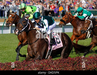 Nov. 5, 2011 - Louisville, KY, USA - Regally Ready,8, with Corey Nakatani up won the Turf Sprint Division during - Stock Photo