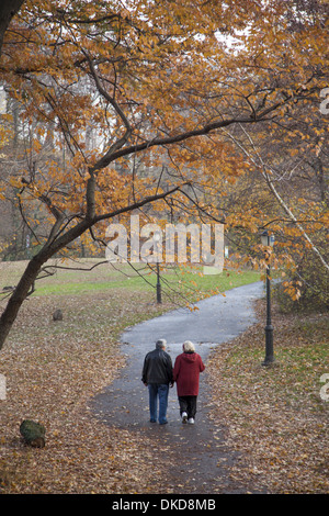 Old couple walk through the autumn leaves in prospect Park, Brooklyn, NY. - Stock Photo