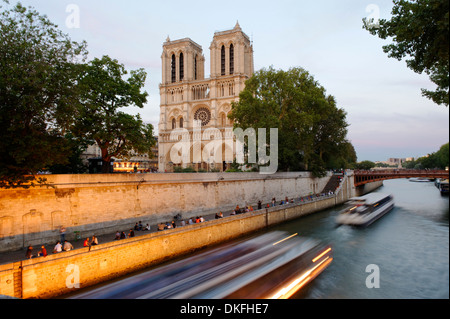 Cathedral Notre-Dame de Paris in the last evening light, on the Île de la Cité and the Seine, Paris, Ile-de-France, - Stock Photo