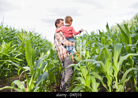 Farmer and son in field of crops - Stock Photo