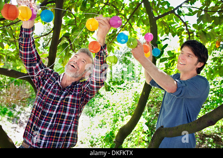 Father and adult son putting fairy lights in tree - Stock Photo