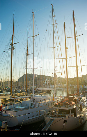 Gorgeous yachts moored in Barcelona, view on bay in sunset sun - Stock Photo