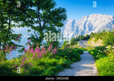 Mountain road in the Berchtesgaden Alps at the Hoher Goell, Bavaria, Germany - Stock Photo