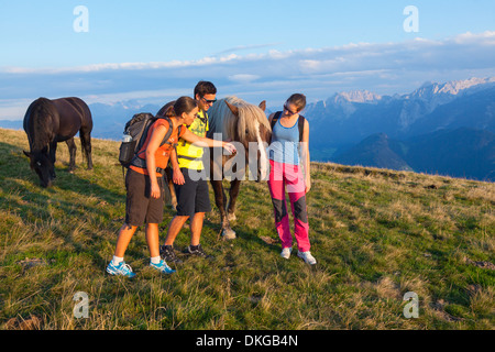 Mountain hikers on alpine meadow with horses in the Osterhorn Group, Salzburg State, Austria - Stock Photo