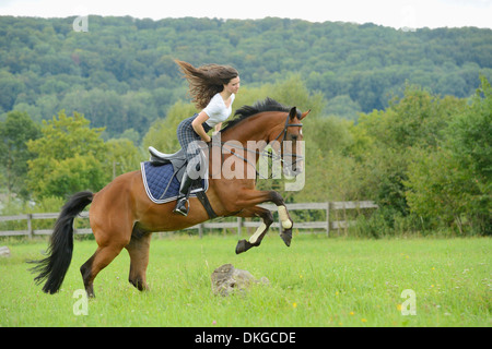 Teenage Girl Rider On Chestnut Horse Jumping Over Oxer