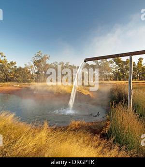 Steaming hot artesian bore water pours from a high pipe into a pool surrounded by  golden grasses and trees in outback - Stock Photo