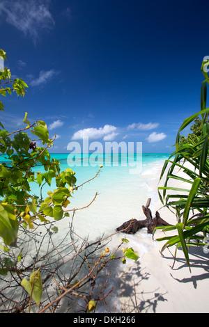 Beach on desert island, Maldives, Indian Ocean, Asia - Stock Photo