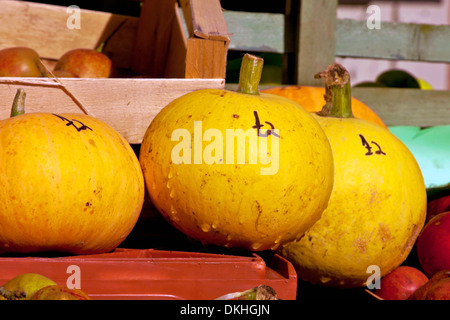 Seasonal fruit for sale- pumpkins and apples, Coughton Court , Alcester, Warwickshire, Great Britain - Stock Photo