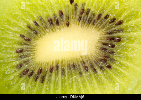 Kiwi fruit close up - Stock Photo