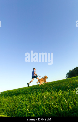 Middle age man running on a grassy field with a Golden Retriever dog. - Stock Photo