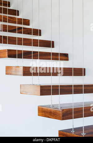 Close up of wood african cape cape morea wild iris or for Free floating stairs