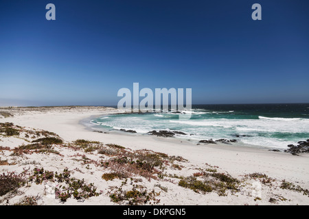 Waves rolling up on sandy beach - Stock Photo
