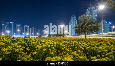 Flowers and palm trees on a traffic island of a roundabout on Sheikh Zayed Road at night, Marina, New Dubai, UAE - Stock Photo
