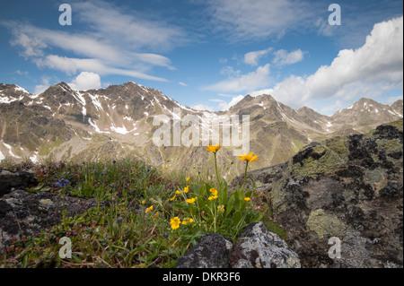 Europe Tyrol Austria Urgtal Alps alpine mountain mountain landscape Europe idyll mountainous mountains stone stony - Stock Photo