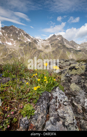 Europe Tyrol Austria Urgtal Alps alpine mountain mountain landscape Europe idyll mountainous mountains stone stony - Stock Photo