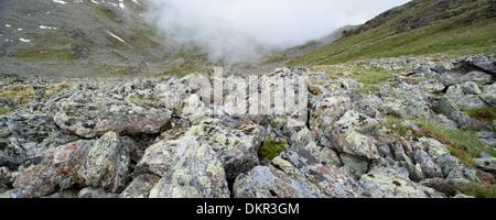 Europe Fiss Tyrol Austria Tirol uplands Urgtal Alps alpine mountain mountain landscape mountain scenery landscape - Stock Photo
