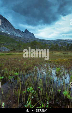 Kuglhornet Ofoten Northern Europe Norway water Europe Scandinavia Scandinavian alpine mountain mountain landscape - Stock Photo