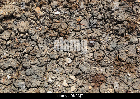 Andalusia, detail, mud, earth, heat, structure, olive groves, tears, Spain, concepts, brown, graphical, hot, dry, - Stock Photo