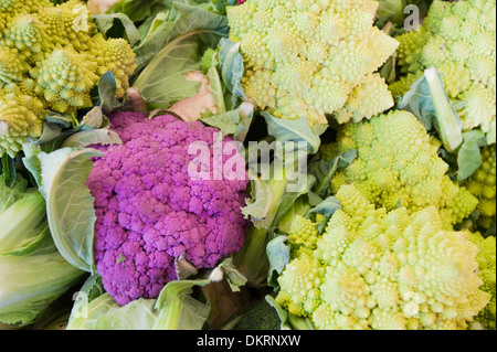 Italy, cauliflower, eat, vegetables, market, romanesco, Venice - Stock Photo