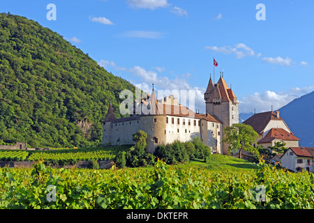 Europe Switzerland CH Vaud Aigle Chemin de l'Ecluse castle Aigle castle place wine vineyards architecture trees - Stock Photo