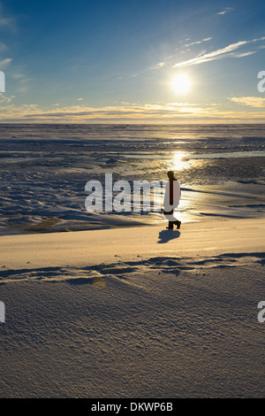 Man walking on the banks of the Sag river emptying into Prudhoe Bay Beaufort Sea Arctic Ocean Deadhorse Alaska USA - Stock Photo