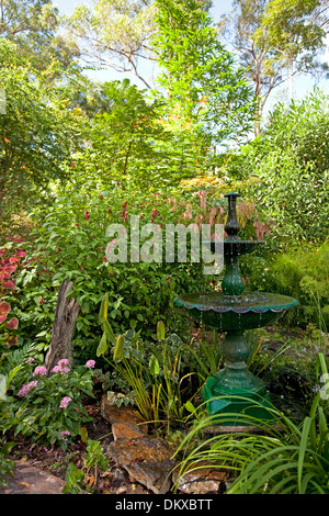 Lush sub-tropical garden with decorative fountain / water feature surrounded by emerald foliage, flowering shrubs - Stock Photo