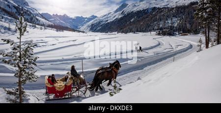 Switzerland Europe mountain mountains winter canton GR Graubünden Grisons Engadin Engadine Upper Engadine horse - Stock Photo