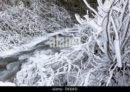 Frozen Ice and Snow Along Flowing Water Stream or River with Icicles on Tree Branches in WInter - Stock Photo