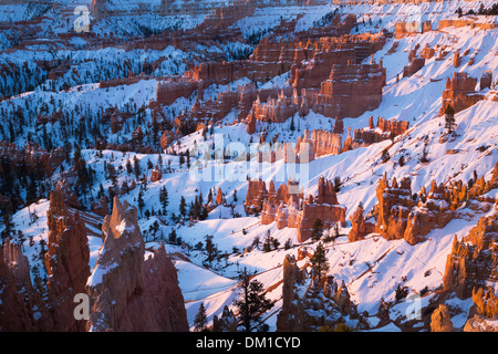the hoodoos in winter, Bryce Canyon, Utah, USA - Stock Photo