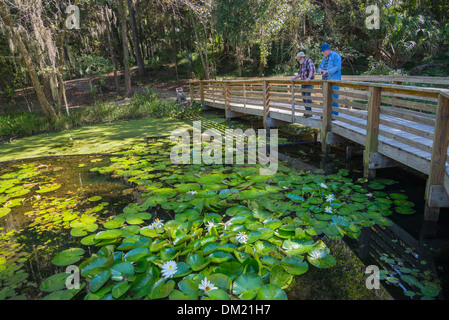 Gainesville Florida Kanapaha Botanical Gardens Hummingbird Garden ...