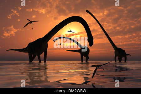 A Group Of Sauropod Omeisaurus Feeding. - Stock Photo