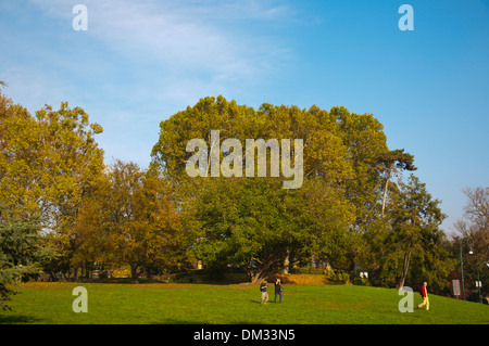 Parco del Valentino park Turin city Piedmont region northern Italy Europe - Stock Photo