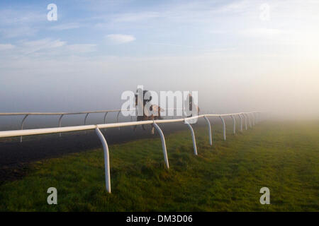 UK Weather Fog & Inversion Layer over Middleham Gallops, Horse cantering on the North Yorkshire Dales.   Middleham now boasts its own grass and all-weather gallops and is established as a leading training centre in the UK where fifteen trainers are based. The facilities and layout have continued to improve allowing trainers to send out fit and competitive horses and have been rewarded with further success at the top level.
