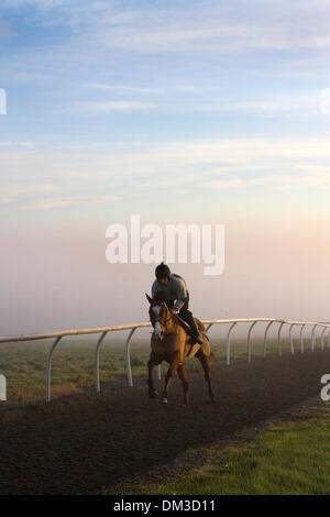 Middleham, Yorkshire, UK. 11th December 2013.  Early morning Uk Weather with Fog & Inversion Layer over Middleham practice Gallops, North Yorkshire Dales.   Middleham now boasts its own grass and all-weather gallops on the Low and High Moors.  Middleham is established as a leading training centre in the UK where fifteen trainers are based. The facilities and layout have continued to improve allowing trainers to send out fit and competitive athletes and have been rewarded with further success at the top level. © Mar  Photographics/Alamy Live