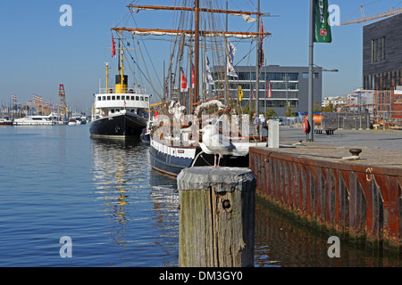 Europe Germany Bremen Bremerhaven Hermann-Heinrich-Meier-Strasse H.-H.-Meier-Strasse new harbour port ships seagull - Stock Photo