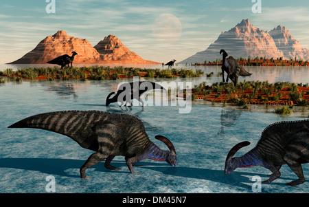 A Herd Of Parasaurolous Duckbill Dinosaurs. - Stock Photo
