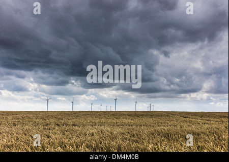 Storm clouds gather over wind turbines in a field of ripening wheat near Beverley, East Riding of Yorkshire, UK. - Stock Photo