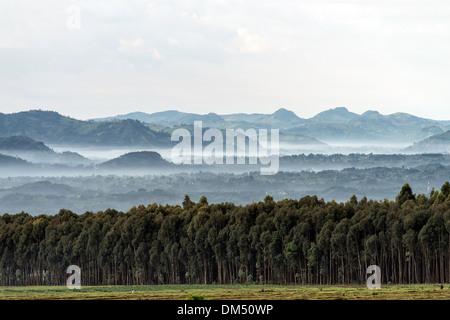 Landscapes Volcanoes National Park Rwanda Africa - Stock Photo