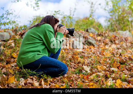 Female photographer crouching in fall leaves to take a picture  - Stock Photo